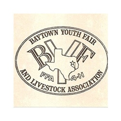 Baytown Youth Fair