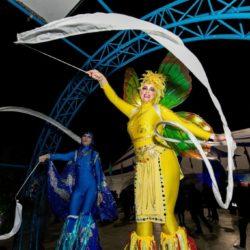 Stilt Walker Cirque Cage and Aquarium Photography
