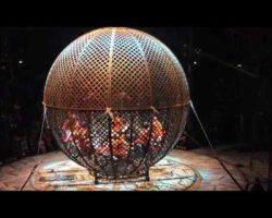 Dominguez Family globe of death